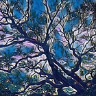 Mystic Moonlight Angel Oak Tree by Cindi Hardwicke