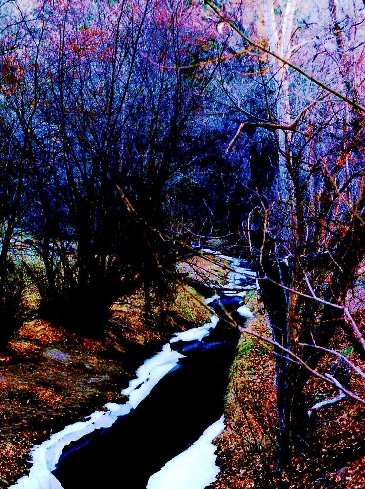 Snowy Creek by Marie Monroe