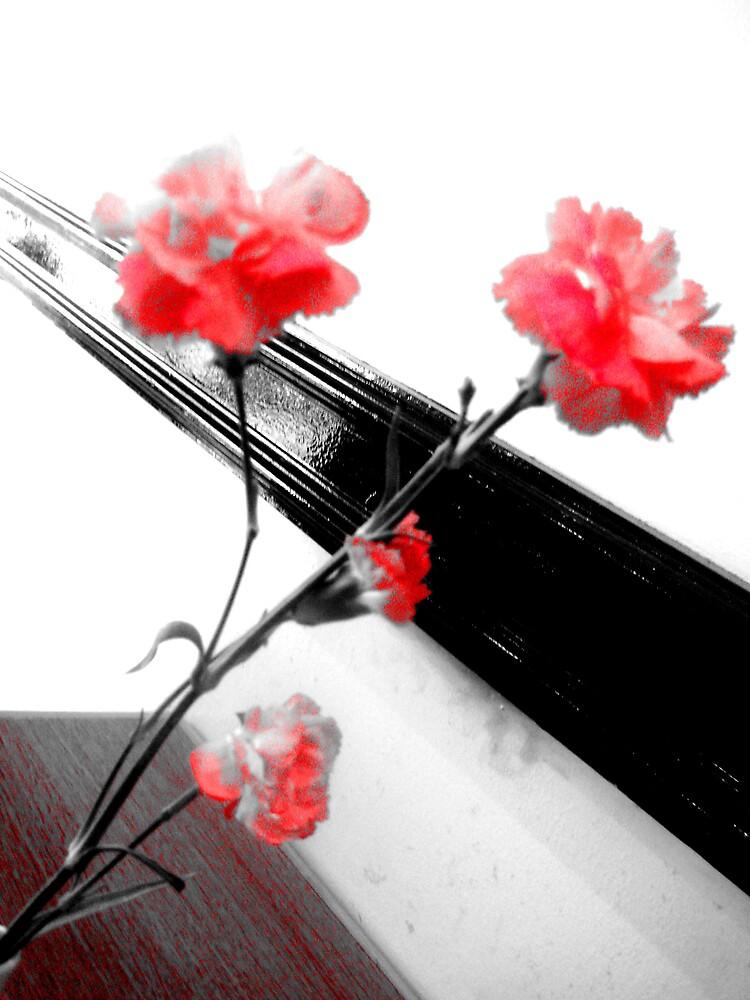 Flowers by katurahstevens