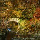 Foley's Bridge by Derek Smyth
