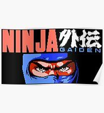 Ninja Gaiden (NES) Poster