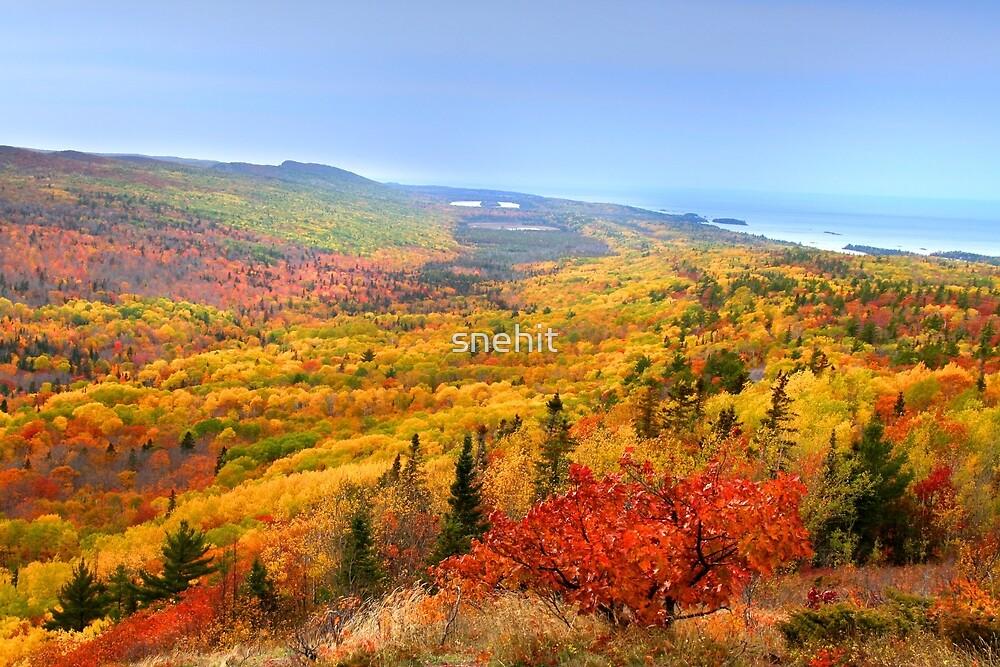 Beautiful autumn landscape by snehit