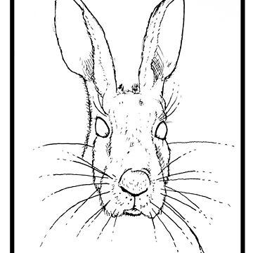 Hare by JackCuddihy