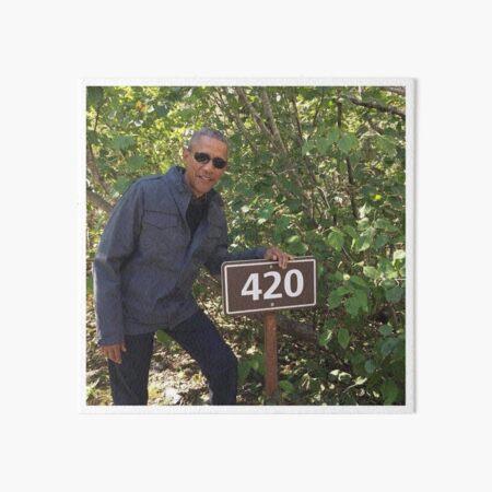 420 Obama Print Art Board Print