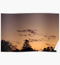 Trees and sunset Poster