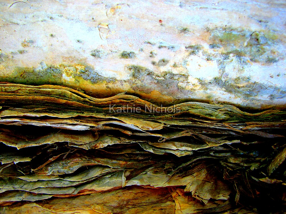 Rugged Terrain by Kathie Nichols
