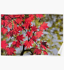 Red Autumn Maple Leaves Landscape Poster