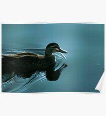 Darkwing Duck Enlightened Poster