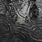 August rain  by Julia Pärnänen