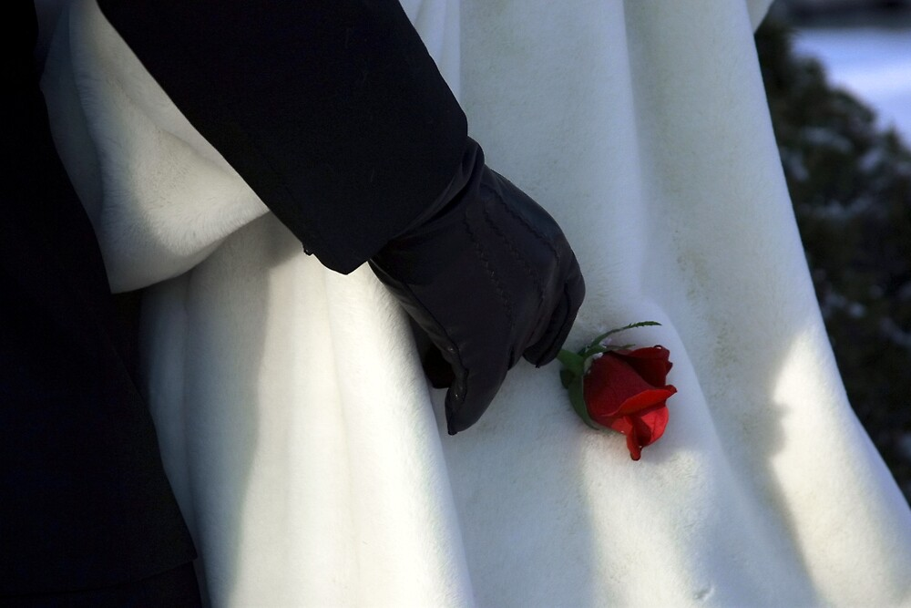 Escorting with a Rose by Jeff Harris