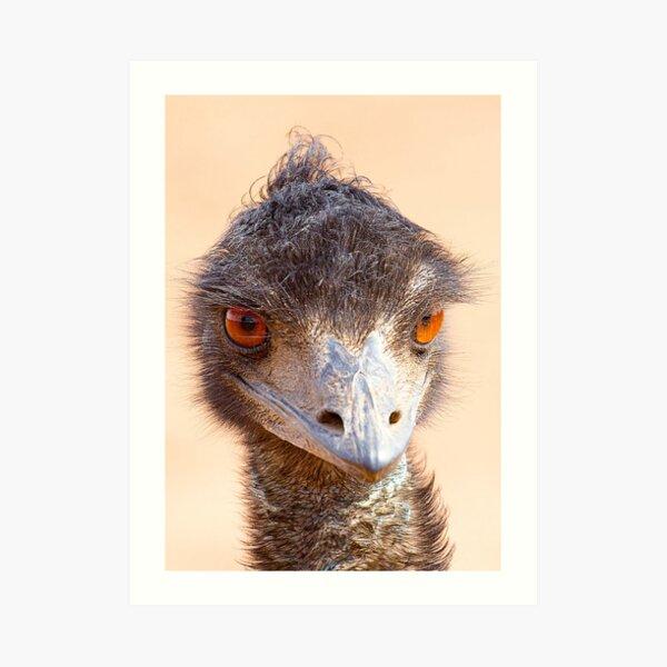 Emu Eyes Art Print