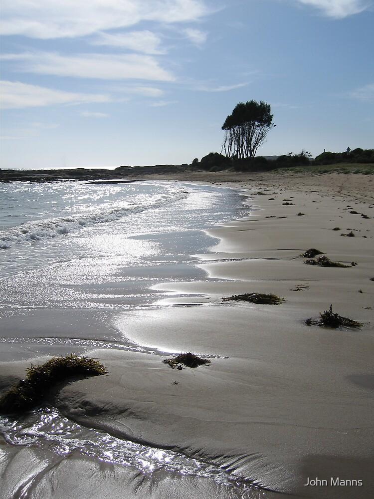One tree beach by Johnnie