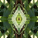Diamond Droplets by spiritahgraphy