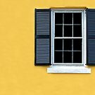 Mellow Yellow by Michael Farruggia
