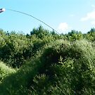 Fly Fishin' by Alvin-San Whaley