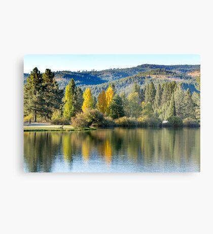 Mill Pond in Autumn Metal Print
