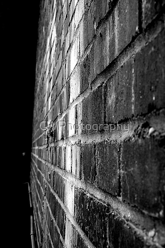 Brick Wall by CWPhotography