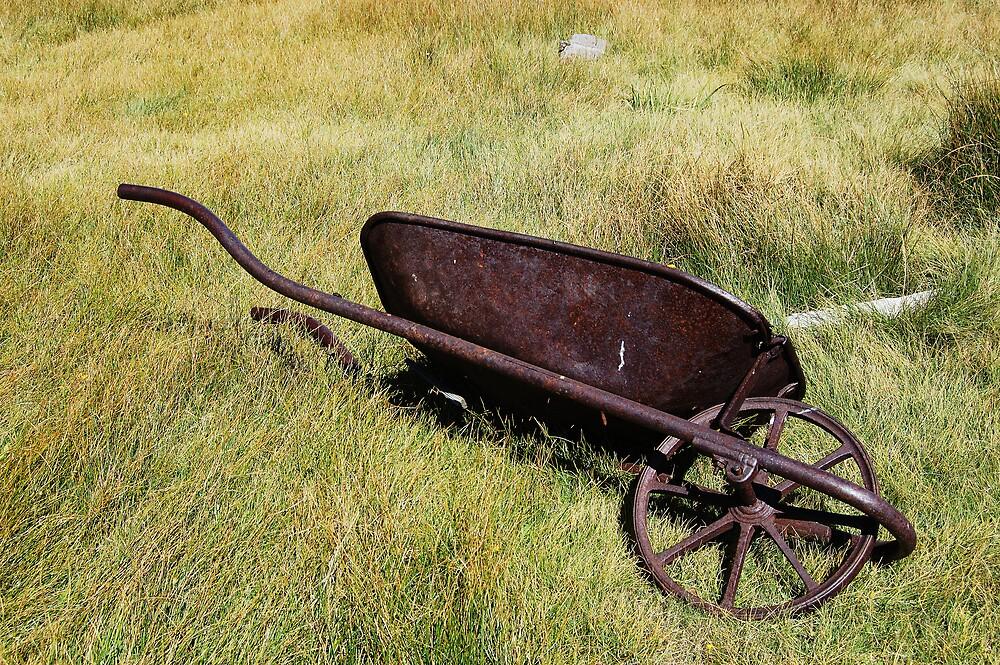 Wheeled Out by Karina Kaiser