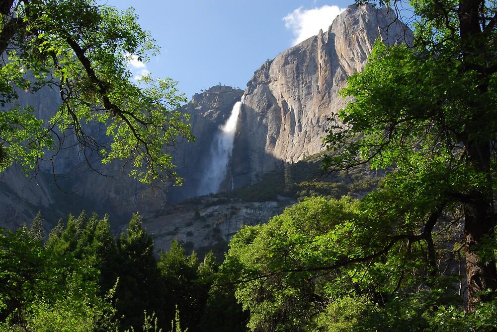Yosemite Falls by Dan Accardo