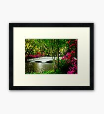 The Bridge in Spring Framed Print