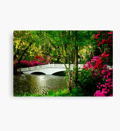 The Bridge in Spring Canvas Print