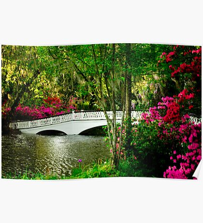 The Bridge in Spring Poster