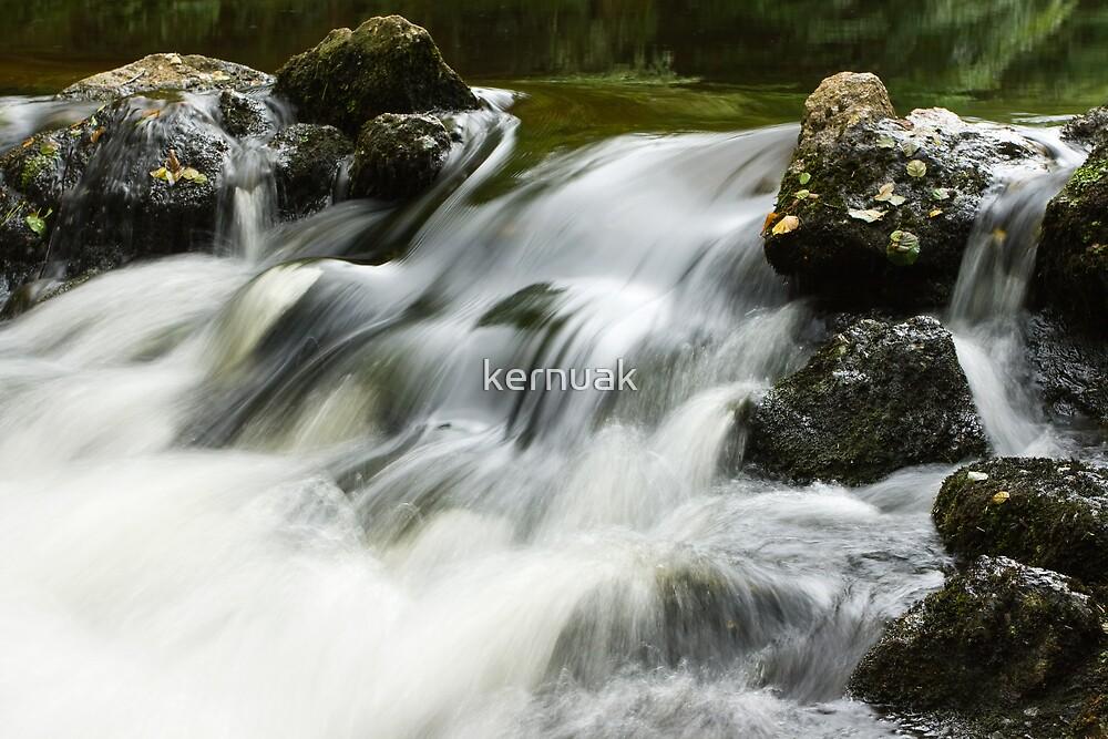 River Teign Cascade by kernuak