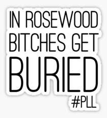 "Pretty Little Liars ""Bitches Get Buried"" Sticker"