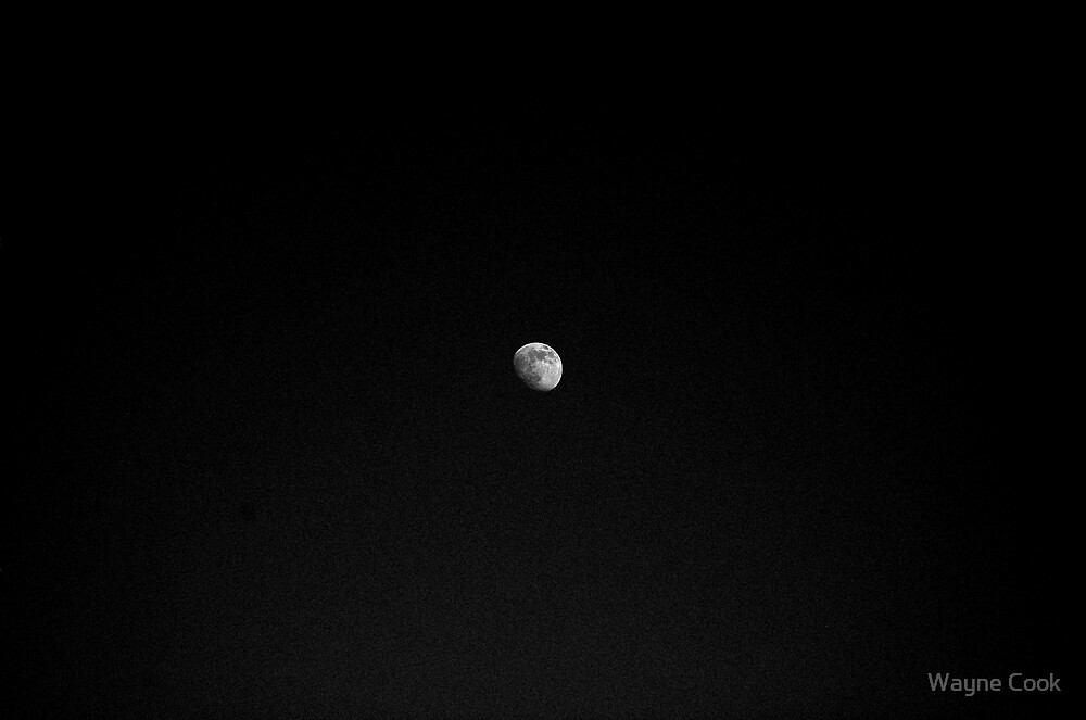 Lonely, Lonely, Moon, Lonely, Looking Sky.... by Wayne Cook
