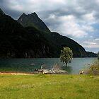 Mis lake by annalisa bianchetti