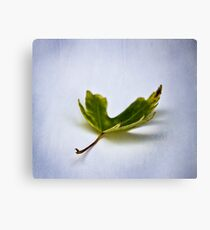Leaf #2 Canvas Print