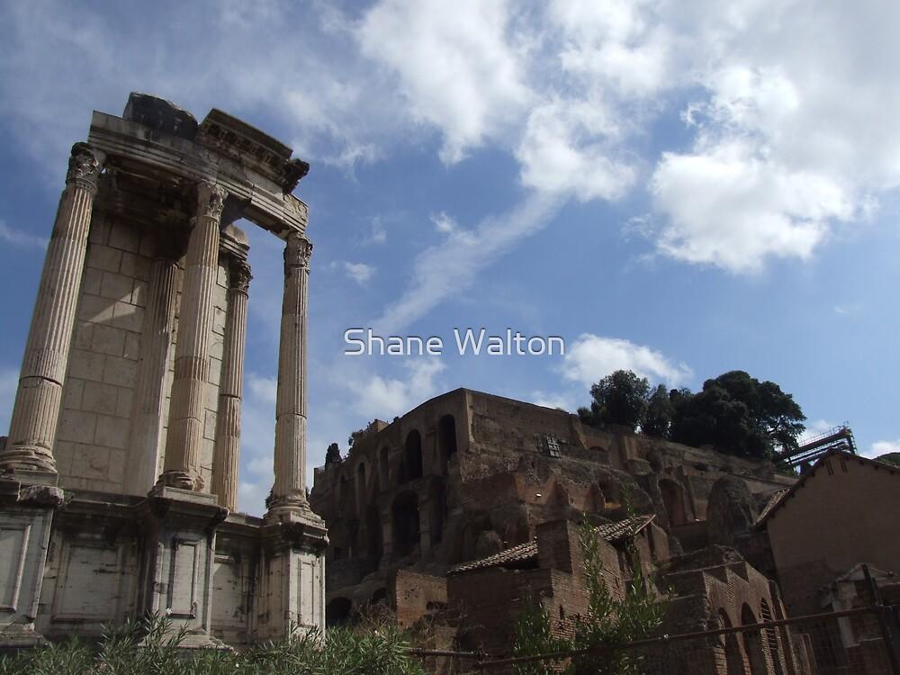 Pillars of the Vestal Virgins by Shane Walton