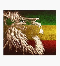 King Of Judah Photographic Print