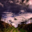 The Mountain Lane by doublevision