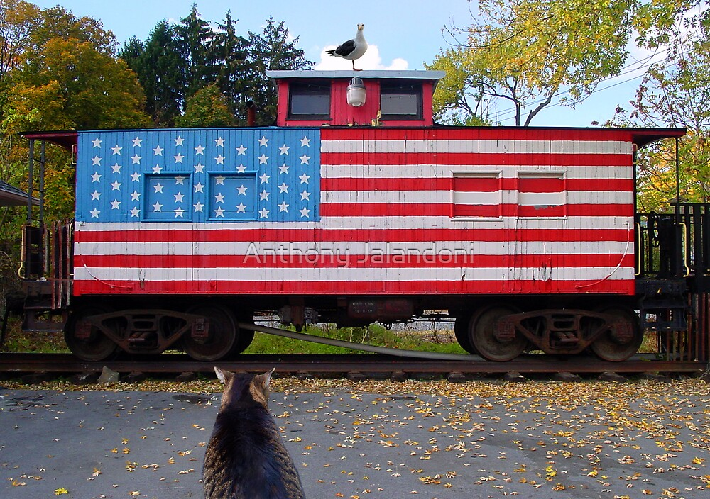 The cat, the train and the seagull by Anthony Jalandoni