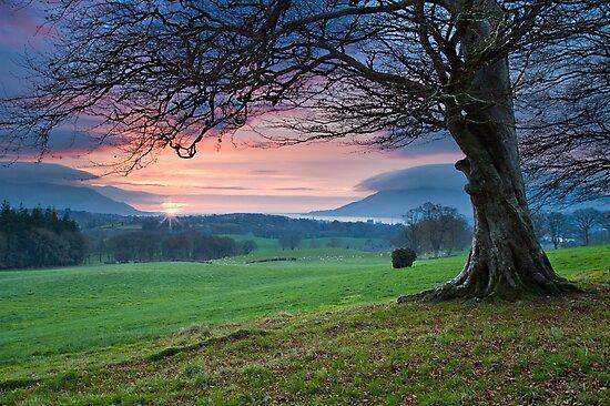 First Light by Derek Smyth