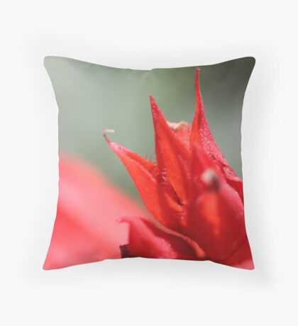 The King's Crown Throw Pillow