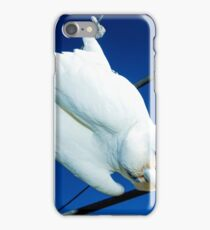 sunnie my bird majorca central victoria on the hills hoist iPhone Case/Skin