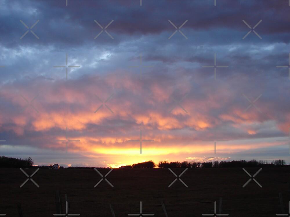 Sunset by Diane Petker