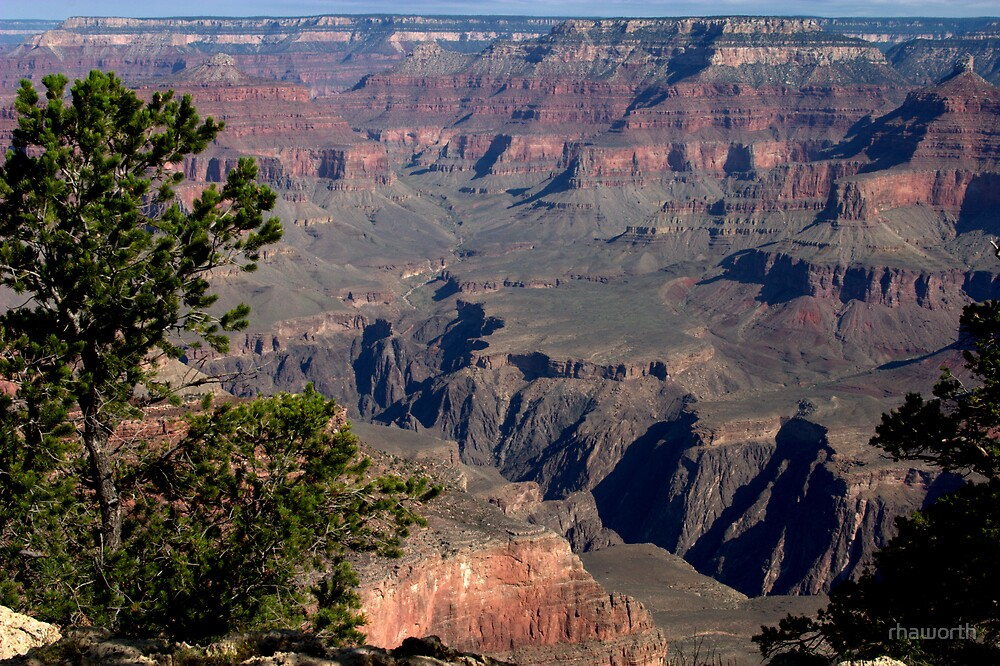 Arizona's Grand Canyon at morning by rhaworth