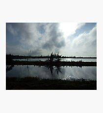 Wetlands Photographic Print