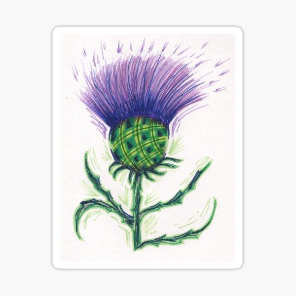 Scottish Tartan Thistle Sticker