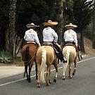 Los Tres Amigos by waddleudo