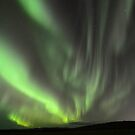 Northern Lights by Jennifer Hulbert-Hortman