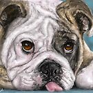 Painting of a brown and white Bulldog lying down with his tongue out by ibadishi