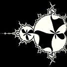 Monochrome Mandelbrot 001 by Rupert Russell