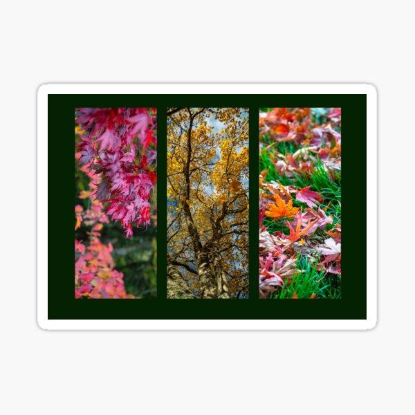Autumn Triptych  Sticker