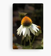 Dreaming of Sunny Summer Days Canvas Print