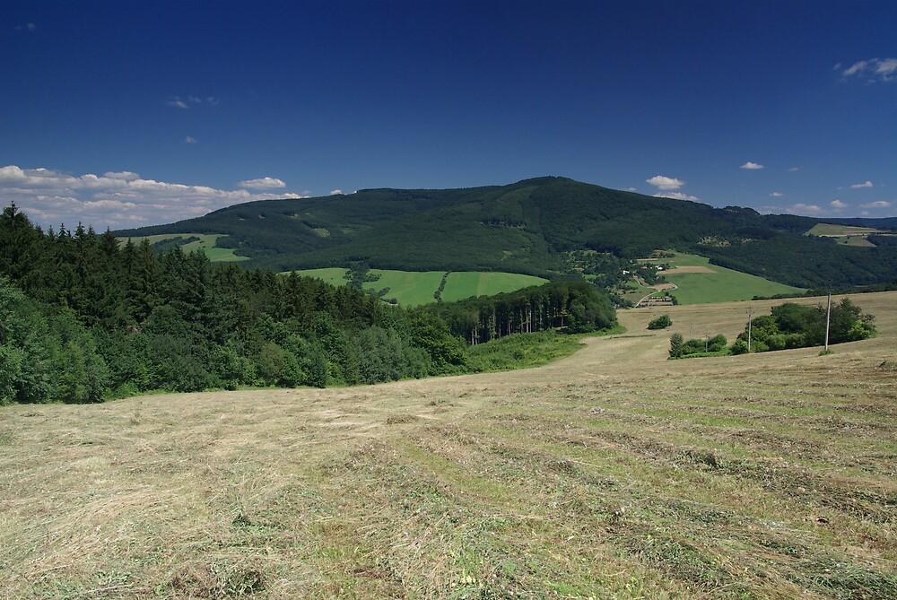 Valley near Strani, Czech Republic by ludek