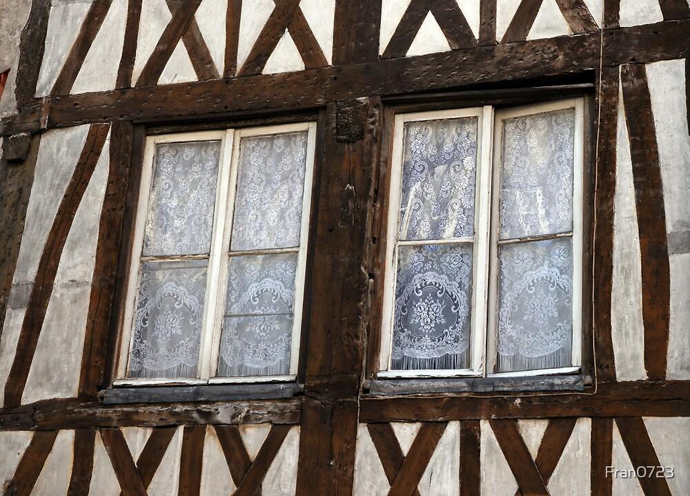 Windows in Braun by Fran0723